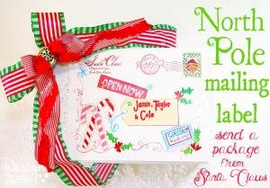 Paquete desde el Polo Norte