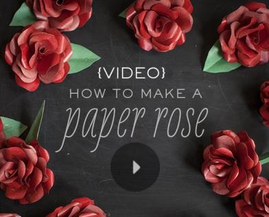 VideoPaperRose